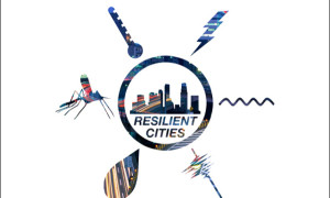 640_resilient cities