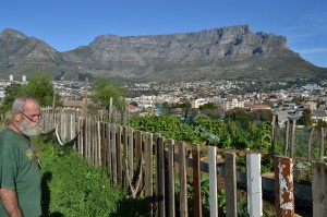 PRESERVATION: Cities around the world are trying to preserve natural spaces within the urban jungle. Such spaces not only create green havens for citizens to enjoy, but can provide a platform for creating jobs. If nurtured and developed correctly, this can have a huge impact in South Africa, says the writer